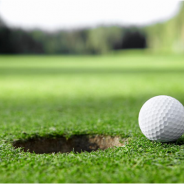 All you want to know about Golf